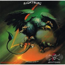 Vinyl Nightwing ‎– Something In The Air